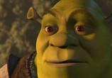 Мультфильм Шрэк / Shrek (2001) - cцена 9