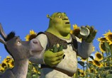 Мультфильм Шрэк / Shrek (2001) - cцена 6