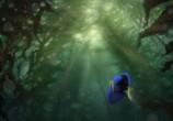 Мультфильм В поисках Дори / Finding Dory (2016) - cцена 1