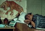 Фильм Полосатый рейс (1961) - cцена 1