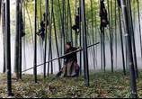 Фильм Дом летающих кинжалов / House of Flying Daggers (2005) - cцена 2