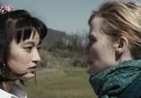 Фильм Обычное сердце / Le coeur régulier (2016) - cцена 9