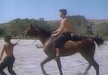Фильм Цыган. Возвращение Будулая (1979) - cцена 3