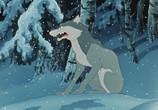 Мультфильм Шедевры отечественной мультипликации. Лесные истории (1955) - cцена 4