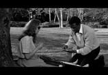 Фильм Клочок синевы / A Patch of Blue (1965) - cцена 2