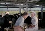 Фильм Яблоко раздора (1962) - cцена 7