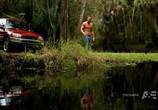 Сцена из фильма Болота / The Glades (2010) Болота сцена 2
