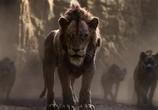 Сцена из фильма Король Лев / The Lion King (2019)