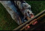 Фильм Лезвия / Blades (1989) - cцена 5