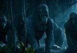 Фильм Тарзан. Легенда / The Legend of Tarzan (2016) - cцена 5