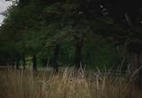 Сцена из фильма Топ Гир Апокалипсис / Top Gear Apocalypse (2010) Топ Гир Апокалипсис сцена 1
