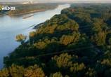 Сцена из фильма Дунай: Европейская Амазонка / Danube:Europe`s Amazon (2012) Дунай:Европейская Амазонка сцена 2