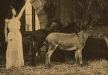 Фильм Пиноккио / Pinocchio (1911) - cцена 1