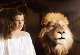 Фильм Хроники Нарнии: Покоритель Зари / The Chronicles of Narnia: The Voyage of the Dawn Treader (2010) - cцена 7