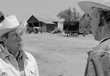 Фильм Хад / Hud (1963) - cцена 4
