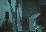 Сцена из фильма Пиноккио / Pinocchio (1911) Пиноккио сцена 2