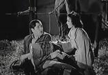 Фильм Дам миллион / I'll Give a Million (1938) - cцена 6