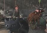 Мультфильм Драконы: Гонки бесстрашных. Начало / Dragons: Dawn of the Dragon Racers (2014) - cцена 1