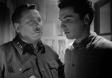 Сцена из фильма Летят журавли (1957) Летят журавли