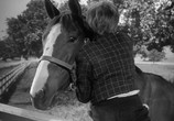 Фильм Мой брат разговаривает с лошадьми / My Brother Talks To Horses (1947) - cцена 2