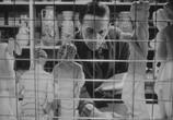 Фильм Безумец / Le fou (1970) - cцена 2