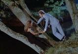 Фильм Рассеянный / Le distrait (1970) - cцена 1