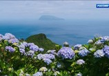 Сцена из фильма Морские гиганты Азорских островов / Giants of the Atlantic Azores (2016) Морские гиганты Азорских островов сцена 10