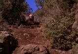 Фильм Дорога домой - Невероятное путешествие / Homeward Bound - The Incredible Journey (1993) - cцена 2