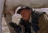 Сцена из фильма Возвращение мушкетеров / The Return of the Musketeers (1989) Возвращение мушкетеров сцена 3