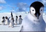 Мультфильм Делай ноги / Happy Feet (2006) - cцена 4