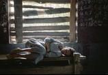 Фильм Убить Билла 2 / Kill Bill: Vol. 2 (2004) - cцена 5