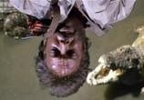 Сцена из фильма Копи царя Соломона / King Solomon's Mines (1985) Копи царя Соломона сцена 6
