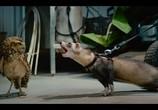 Сцена из фильма Крошечные существа / Tiny Creatures (2020) Крошечные существа сцена 18