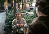 Сцена из фильма Малыш и озорники / Kismaszat és a gézengúzok (1984) Малыш и озорники сцена 5