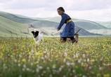 Фильм Пещера желтого пса / Die Höhle des gelben Hundes (2005) - cцена 3