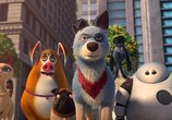 Сцена из фильма Союз зверей: Спасение двуногих / Pets United (2020)