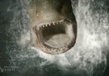 Фильм Акульи плотины / Dam Sharks (2016) - cцена 5