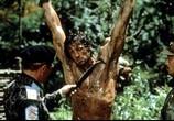 Фильм Рэмбо 2: Первая кровь 2 / Rambo: First Blood Part II (1985) - cцена 3