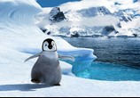Мультфильм Делай ноги / Happy Feet (2006) - cцена 6