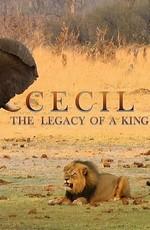 Сесил: Наследие короля