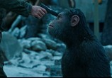 Фильм Планета обезьян: Война / War for the Planet of the Apes (2017) - cцена 1