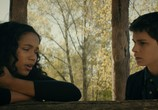 Фильм Мой психолог - Мистер Голубь / Dr. Bird's Advice for Sad Poets (2021) - cцена 1