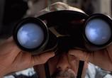Фильм Парк Юрского Периода 3 / Jurassic Park III (2001) - cцена 1