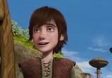 Сцена из фильма Драконы: Всадники Олуха / Dragons: Riders of Berk (2013) Драконы: Всадники Олуха сцена 1