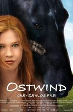 Восточный ветер / Ostwind - Zusammen sind wir frei (2013)