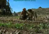 Сцена из фильма Библейская коллекция / The Bible Collection (1993) Библейская коллекция сцена 11