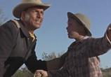 Фильм Всадники из Аризоны / Arizona Raiders (1965) - cцена 5