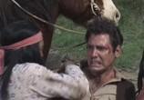 Сцена из фильма Всадники из Аризоны / Arizona Raiders (1965) Всадники из Аризоны сцена 16