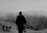 Фильм Телохранитель / Yojimbo (1961) - cцена 1