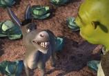 Мультфильм Шрэк / Shrek (2001) - cцена 8